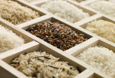 Сорта риса для суши